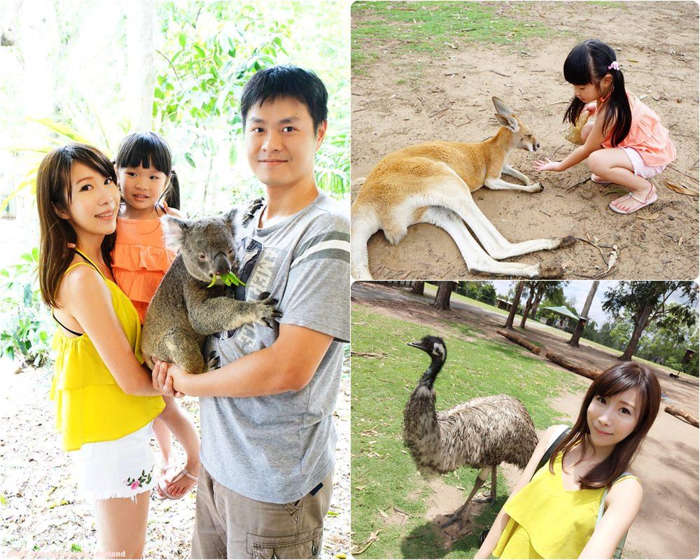 【澳洲自由行】抱無尾熊餵袋鼠 龍柏動物園 ♥ 布里斯本親子景點推薦