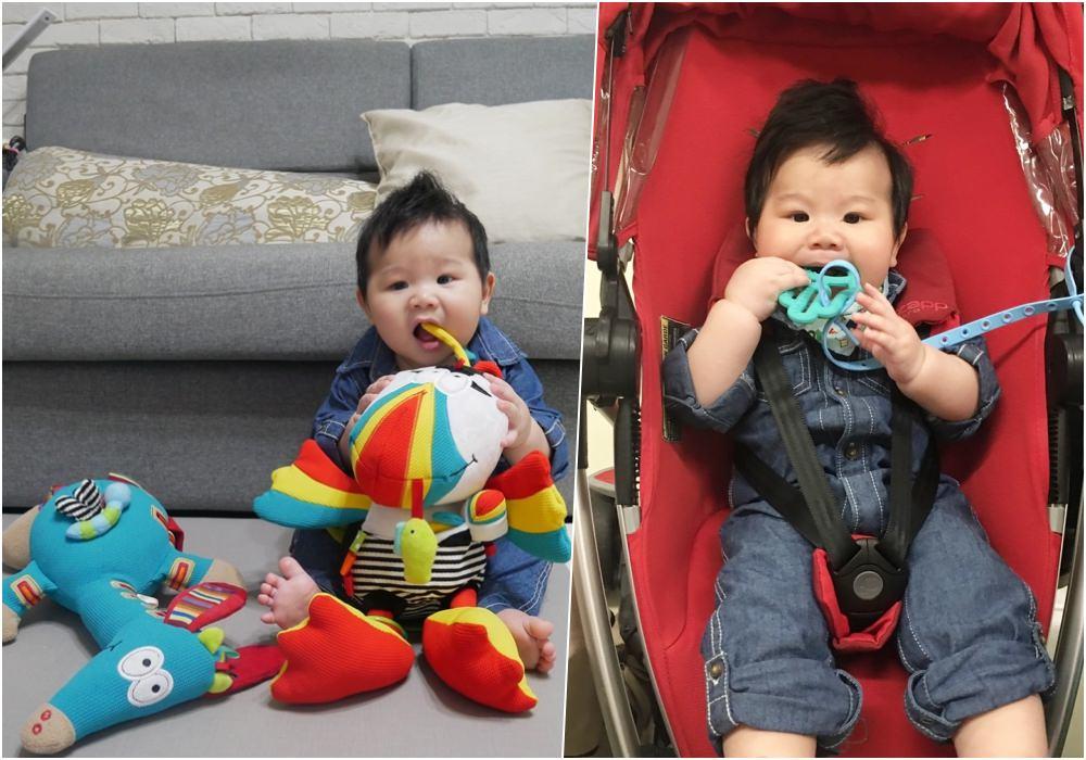 【育兒好物】法國Dolce多功能統感玩具+美國 lil'Sidekick 多功能固定防掉帶