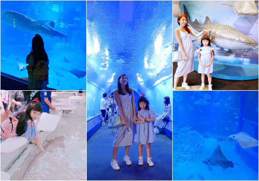 【大阪景點】大阪親子景點推薦 大阪海遊館 ♥ 便宜門票、交通、親子攻略
