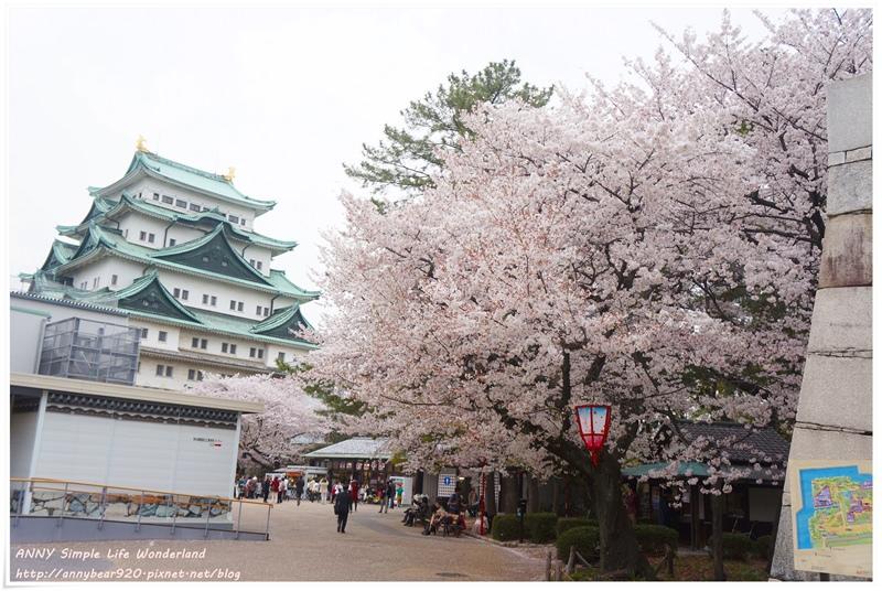 【名古屋合掌村自由行】交通方便名古屋城 ♥ 推薦賞櫻必去人氣景點