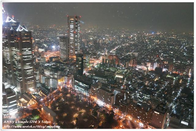 【東京跨年自由行】新宿夜生活好去處 ♥ 免費新宿督廳夜景。思出橫丁居酒屋
