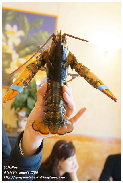 【義大利蜜月】在義大利的最後一餐 ♥ 龍蝦大餐