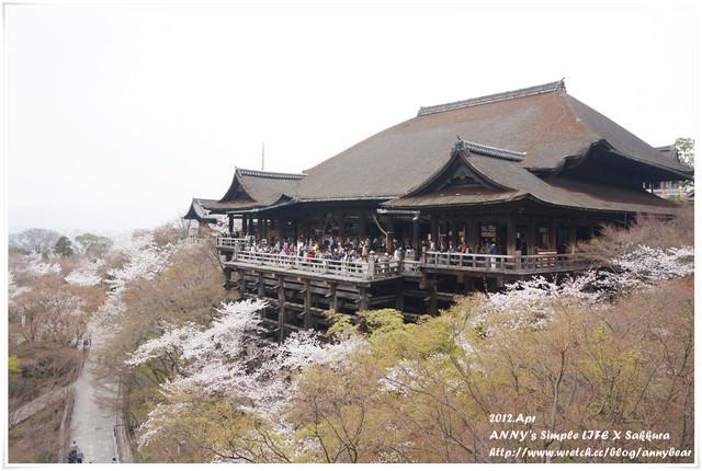【京阪自由行】推薦賞櫻景點 清水寺 夜櫻也超美 ♥ 京都最古老的寺院